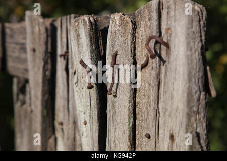 Part of the old worn-out wooden fence with rusty nails sticking out/Сloseup of old fence with nails - Stock Photo