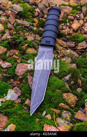 Black knife on green moss. Autumn composition. Stones and moss. - Stock Photo