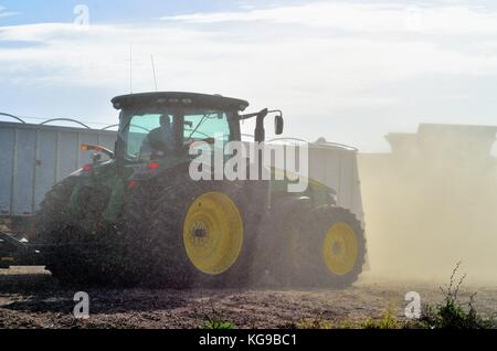 Dust from just harvested corn surrounds tractors, combines and trucks during the harvest on a large farm in northeastern - Stock Photo