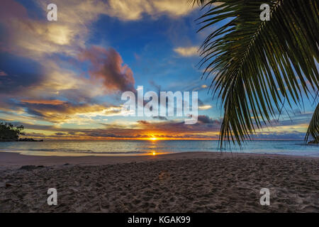 looking through a palm leaf at spectacular beautiful romantic glowing sunset on paradise beach anse georgette, praslin, - Stock Photo