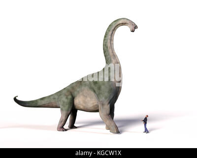comparison of the size of an adult Brachiosaurus altithorax from the Late Jurassic and a 1.8m human (Homo sapiens), - Stock Photo