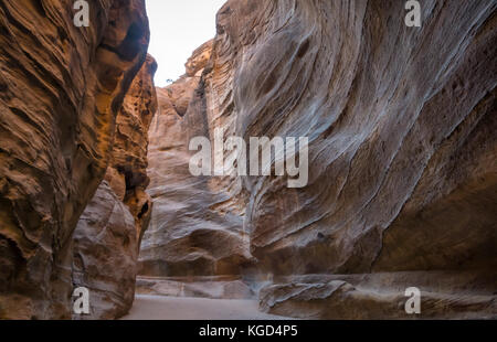 Colourful sandstone walls of empty Siq gorge, in early morning, Petra, Jordan, Middle East - Stock Photo
