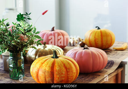 Painted pumpkins in the creative workshop - Stock Photo