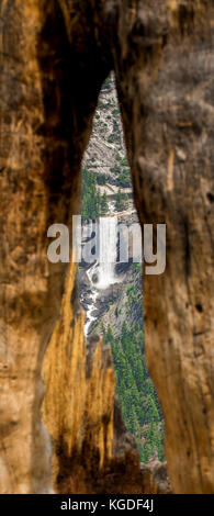 Vernal Falls is visible through a burned out tree in Yosemite National Park. - Stock Photo