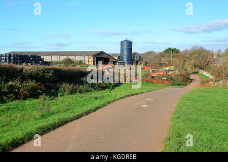 Norton Farm with its huge stack of hay bales stored inside and out with farm vehicles stored out in the yard in - Stock Photo