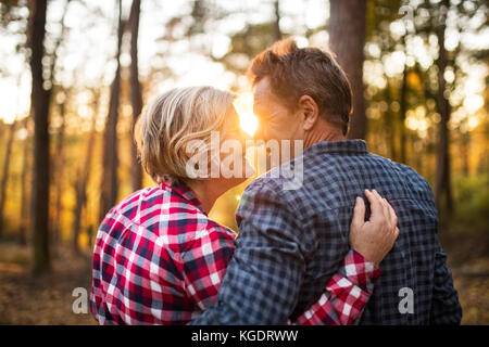 Senior couple on a walk in an autumn forest. - Stock Photo