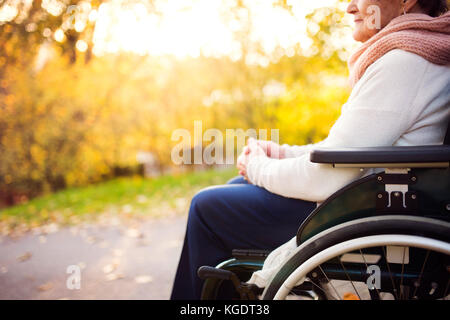 An elderly woman in wheelchair in autumn nature. - Stock Photo