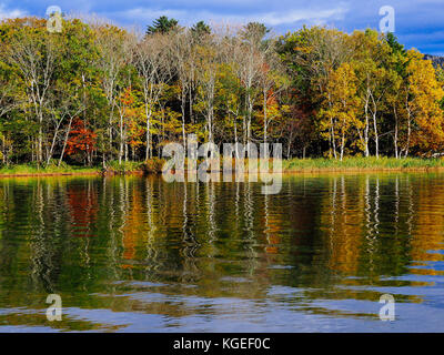 Japanese autumn foliage in Akan, Hokkaido, Japan - Stock Photo