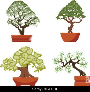 vector set of colorful bonsai trees in pots, isolated on white background. chinese bonsai art symbols, flat design - Stock Photo