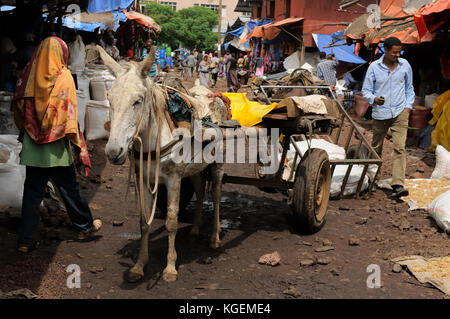 BAHYR DAR, ETHIOPIA - AUGUST 12: Horse horse-cart being used for a transportation of goods within the market in - Stock Photo