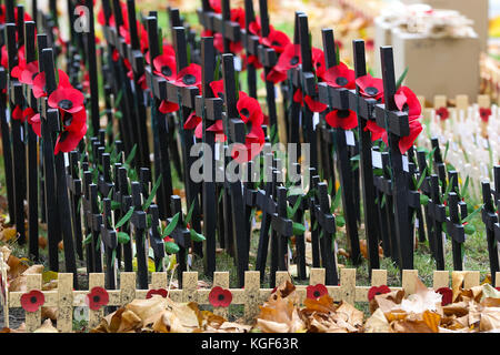 Westminster. London, UK. 7th Nov, 2017. Crosses of Remembrance, bearing the names of fallen soldiers are placed - Stock Photo