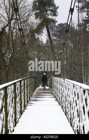 Cold, winter scene, 1 woman walking with dog, across narrow, snow-covered footbridge in quiet, wooded rural location - Stock Photo