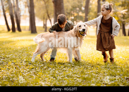 children petting dog  - Stock Photo