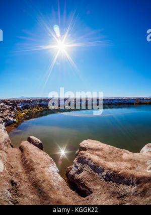 Ojos del Salar Lagoon, Salar de Atacama nearby San Pedro de Atacama, Antofagasta Region, Chile - Stock Photo