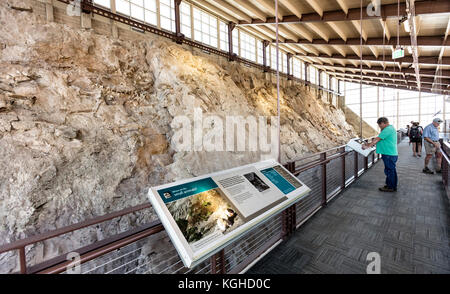 Visitors & Dinosaur Fossils at the Quarry - Dinosaur National Monument, UT - Stock Photo