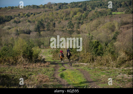 Horse riders near Squabmoor Reservoir, Budleigh Salterton, Devonshire. - Stock Photo