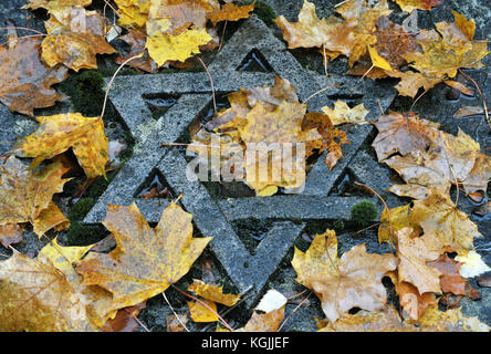 FILE - File picture dated 09 November 2009 showing wet autumn foliage lying on a grave emblazoned with a Star of - Stock Photo