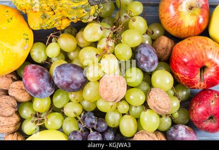 Full image of autumn or fall fruits. All organic, bio, natural, fresh, farm harvested. - Stock Photo