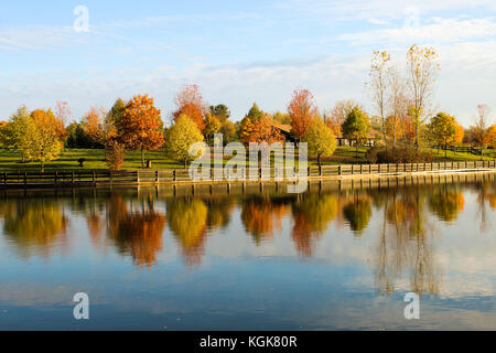 Autumn leaves in Michigan reflecting off of an inland lake in November - Stock Photo