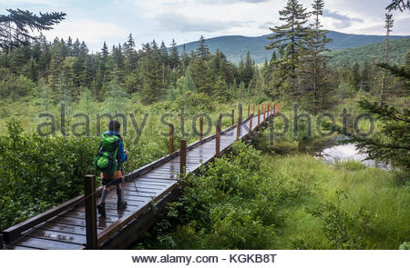 A young boy hikes the Zealand Falls trail to an AMC hut in the beautiful White Mountains. - Stock Photo