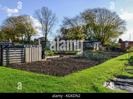 Allotment plot in autumn.  An allotment is a small plot of land where you grow your own vegetables. - Stock Photo