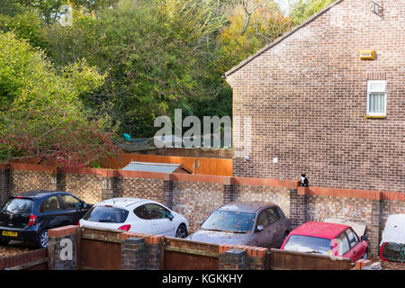 Cars parked in a private off road parking area in a residential suburban neighbourhood, Dorset, UK - Stock Photo