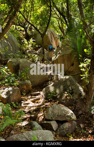 The Seychelles, La Digue, Petit Anse, jungle path over headland to Anse Cocos beach - Stock Photo