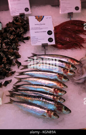 Sardines displayed on ice Mercado San Miguel market, Madrid city centre, Spain - Stock Photo