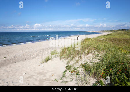 Hornbaek beach with white sand and sand dunes, Hornbaek, Kattegat Coast, Zealand, Denmark, Europe - Stock Photo