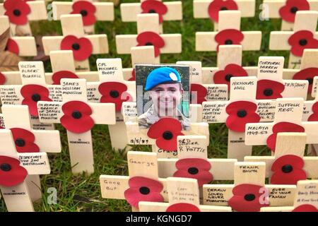 London, UK. 9th Nov 2017. The Field of Remembrance at Westminster Abbey on 9th November 2017 opens to the general - Stock Photo