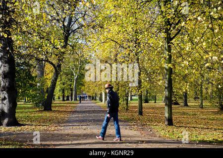 London, UK. 10th Nov, 2017. UK Weather. November sunshine in Hyde Park on the Serpentine. Credit: JOHNNY ARMSTEAD/Alamy - Stock Photo