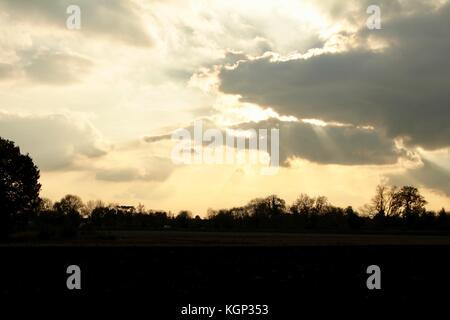 Evening sun behind dark grey clouds with shafts of sunlight and a skyline of sillouetted trees - Stock Photo