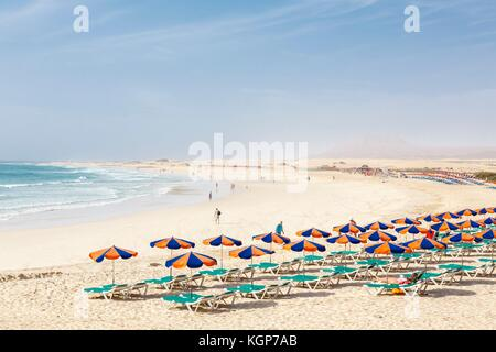 Row of sunbeds and parasols on sandy beach Bajo Negro, Fuerteventura, Canary Islands - Stock Photo