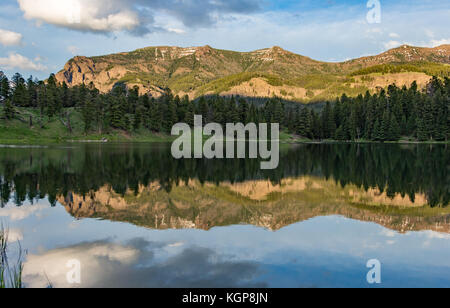 Trout Lake at Yellowstone National Park - Stock Photo