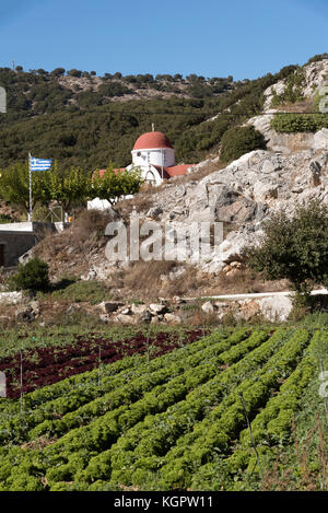 Lasithi plateau, Lasithi, Crete, Greece, October 2017.  A church and lettuces growing in rows on this fertile area. - Stock Photo