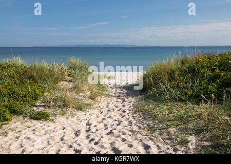 Hornbaek beach with fine white sand and sand dunes with blue sea behind, Hornbaek, Kattegat Coast, Zealand, Denmark, - Stock Photo