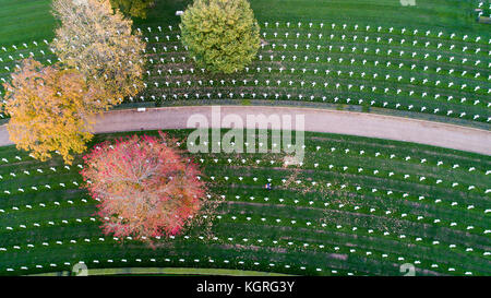 Aerial picture shows the only American War Cemetery in Britain having the autumn leaves cleared in preparation for - Stock Photo