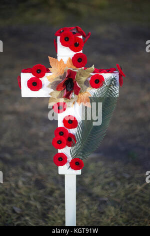 Field of Crosses memorial for fallen soldiers on Remembrance Day - Stock Photo