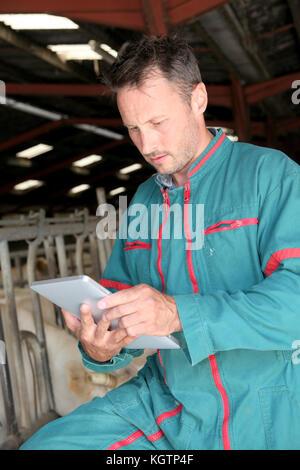 Farmer in barn using electronic tablet - Stock Photo