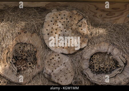 Bee house, to attract solitary bees to nest. - Stock Photo