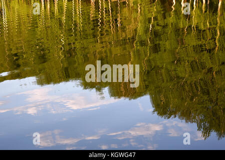 Abstract natural background of birch trees and clouds reflections on the smooth surface of the water in the lake - Stock Photo