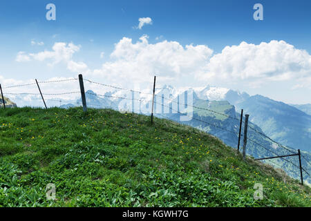 Green mountain meadow in front of barbed wire fence and view to the alpstein massif - Stock Photo