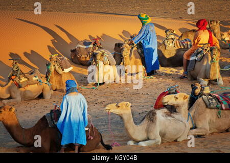 Berbers with the camels in the Sahara desert, Morocco at sunset - trekking safari tour - Stock Photo