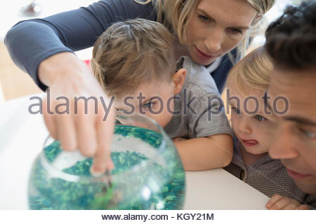 Young family feeding goldfish in bowl - Stock Photo