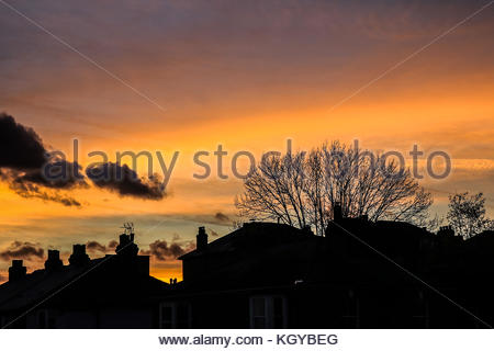London, UK. 10th Nov, 2017. UK Weather. Trees and residential buildings are silhouetted against a beautiful autumn - Stock Photo