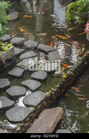 A Japanese Garden Pond With A Red Koi Or Carp And An Old
