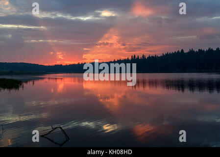 Scenic delicate pink sunrise on the lake with beautiful clouds, trees and an unusual glow on the sky reflecting - Stock Photo