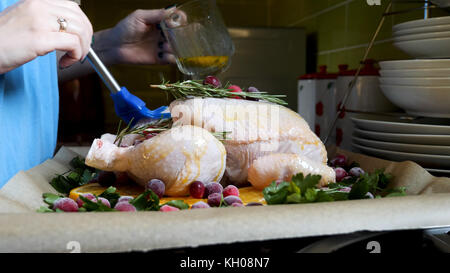Female Hands Brushing Whole Raw Chicken With Roasting Sauce in Roasting Pan With Oranges Cranberries and Herbs in - Stock Photo