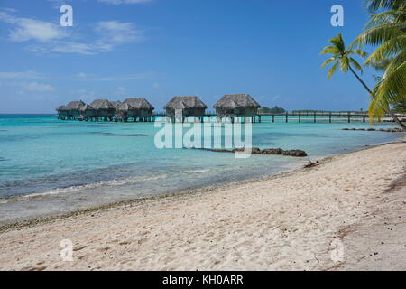 Tropical sandy beach with thatched bungalows on stilts in the lagoon, Tikehau atoll, Tuamotus, French Polynesia, - Stock Photo