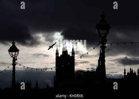 London, UK. 11th Nov, 2017. A seagull flies by the river Thames backed by the silhoutte of the Westminster Place - Stock Photo